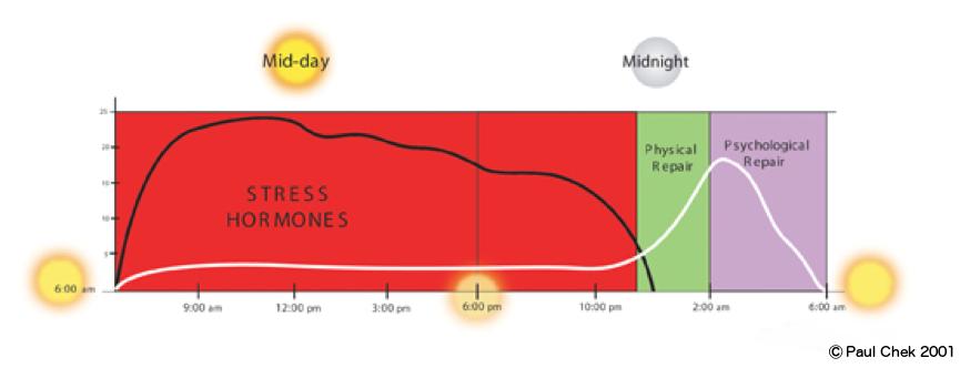 A stressed circadian rhythm