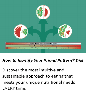 How to Identify Your Primal Pattern Diet online course
