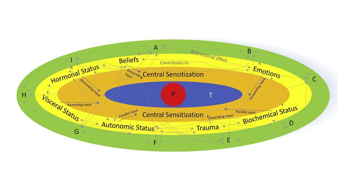 Central Sensitization