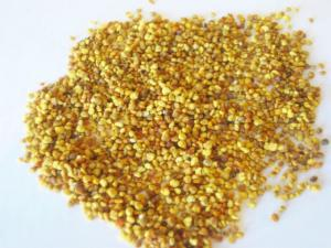 4 Reasons to add Bee Pollen to your Meal Plans
