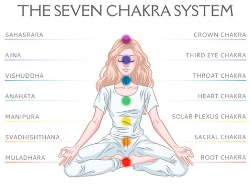 The Root Chakra: The Chakra System Part 1