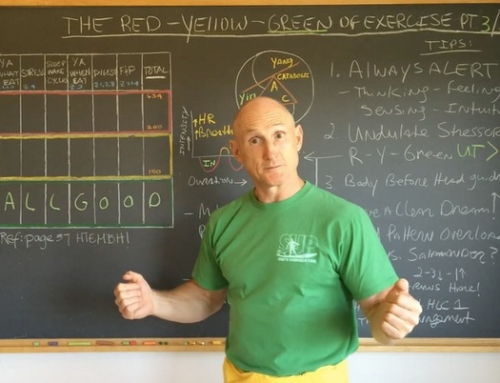 The Red-Yellow-Green Zones of Exercise Part 3