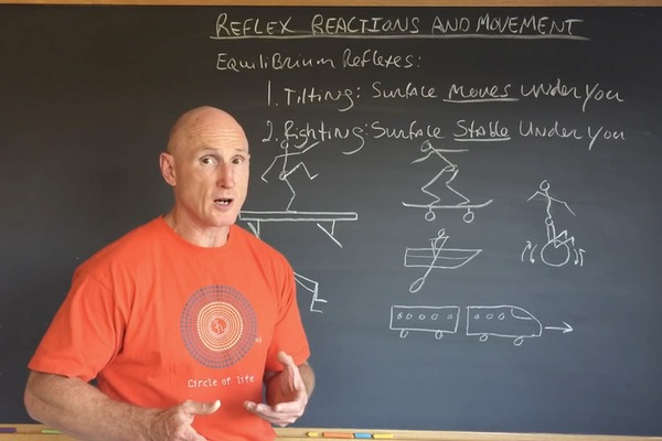 Understanding Reflex Reactions and How Your Body Reacts